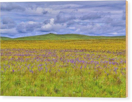 Purple Flowers On The Prairie Wood Print by Jen TenBarge