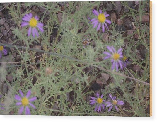 Purple Spring Flowers Wood Print