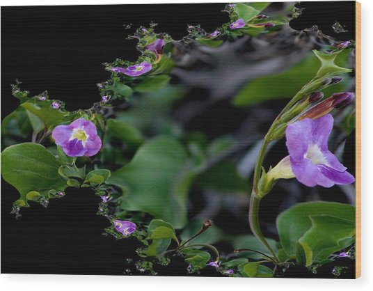 Purple Vitex 2 Wood Print