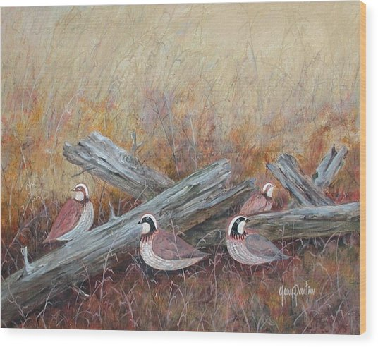 Quail In The Grass Wood Print