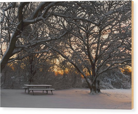 Quiet Moment Before Dawn Wood Print