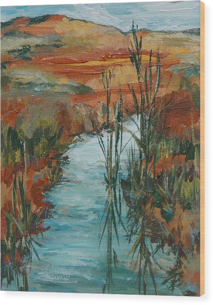 Quiet Stream Wood Print by Sandy Tracey