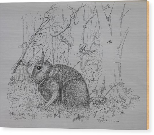 Rabbit In Woodland Wood Print
