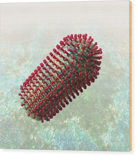 Rabies Virus 2 Wood Print
