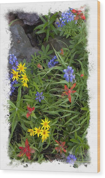 Rain Forest Bouquet Wood Print by Judy Deist