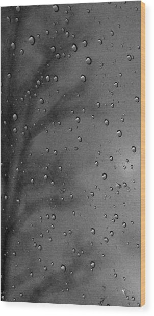 Rain Window Wood Print