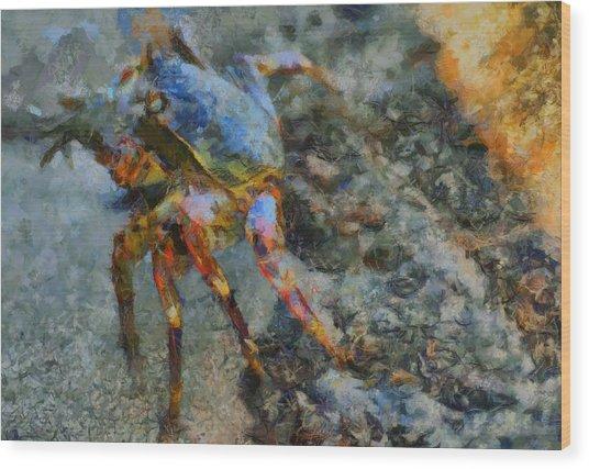 Rainbow Crab Wood Print