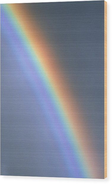 Rainbow Wood Print by Dr Morley Read