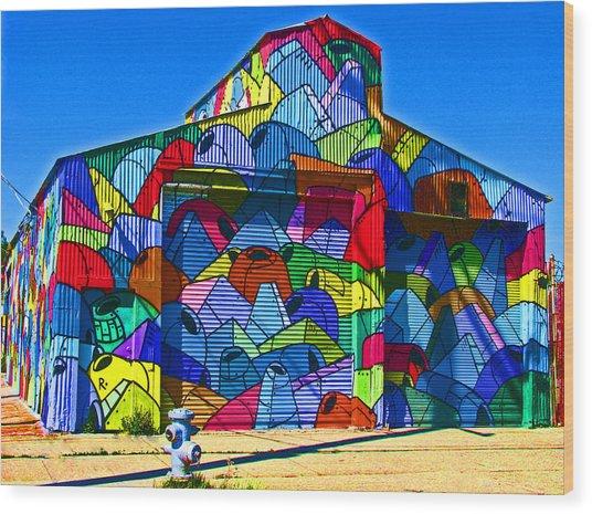 Rainbow Jug Building Wood Print