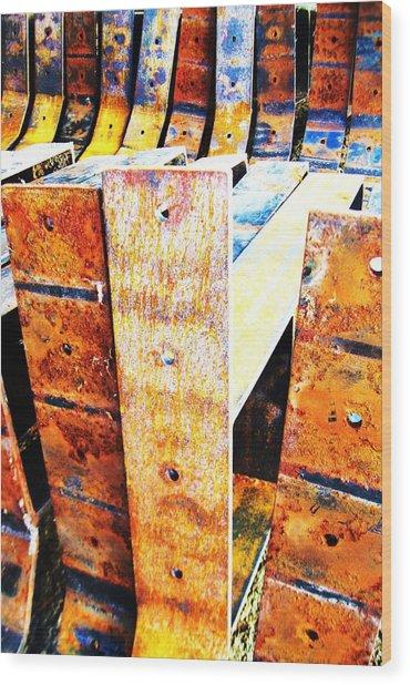Rainbow Rust-1 Wood Print by Todd Sherlock