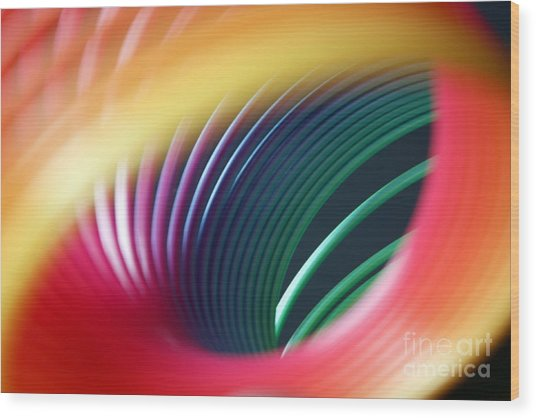 Rainbow Spring I Wood Print by Tracy Reese