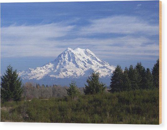 Rainier In High Contrast Wood Print