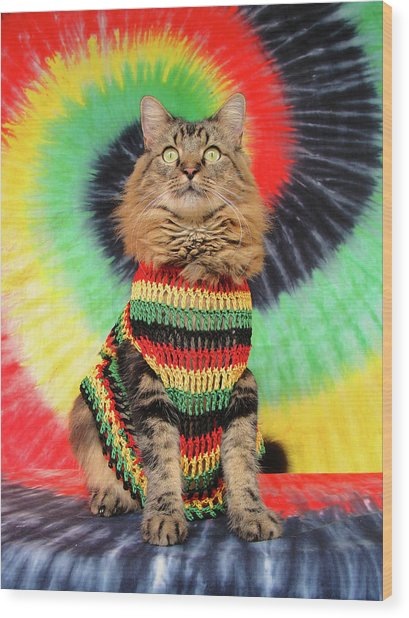 Rasta Cat Wood Print