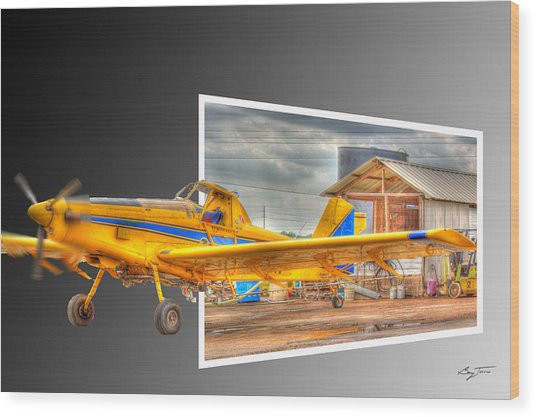 Ready To Fly Wood Print by Barry Jones