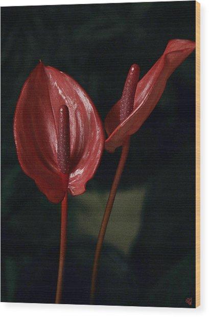 Red Again Wood Print