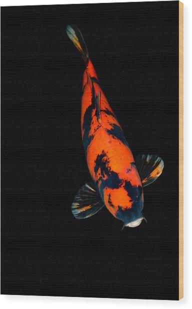 Red Bekko01 Wood Print