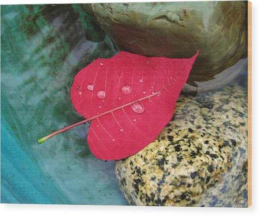 Red Leaf Love Wood Print
