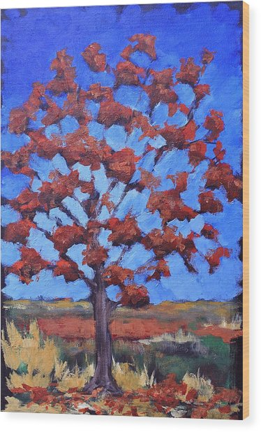 Red Maple Wood Print by Lisa Masters