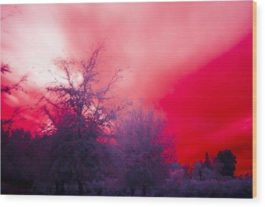 Red Wood Print by Nicholas Evans