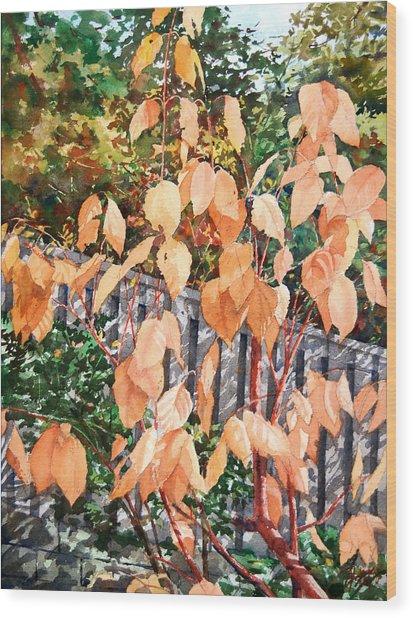 Red Osier Wood Print by Peter Sit
