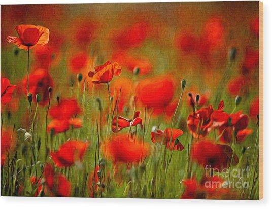 Red Poppy Flowers 02 Wood Print