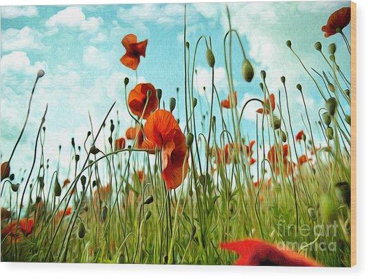 Red Poppy Flowers 03 Wood Print