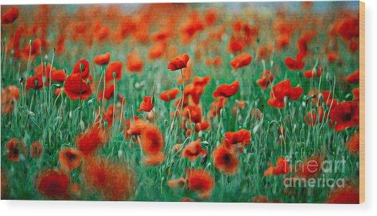 Red Poppy Flowers 04 Wood Print