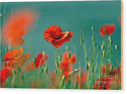 Red Poppy Flowers 06 Wood Print