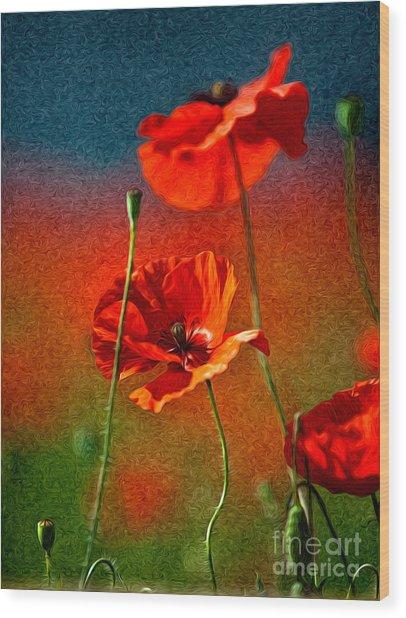 Red Poppy Flowers 08 Wood Print