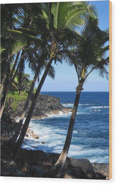 Red Road Drive On Hawaii Island Wood Print