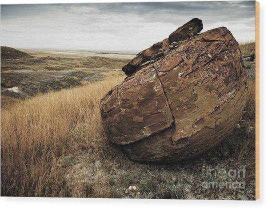 Red Rock I Wood Print