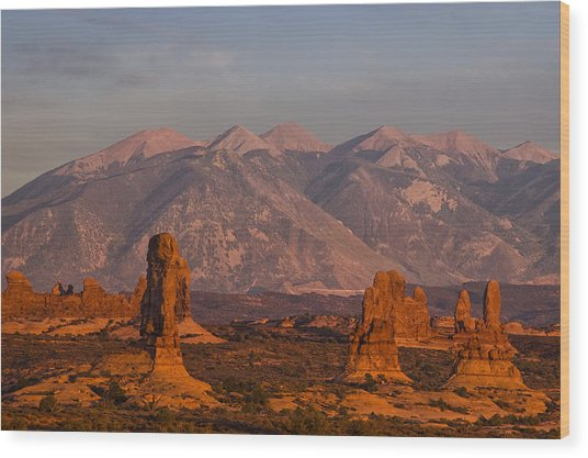 Red Rock Of Arches Wood Print by Andrew Soundarajan