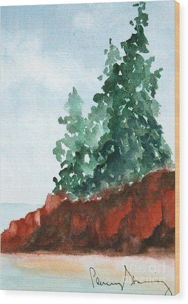 Red Rocks On Waters Edge Wood Print