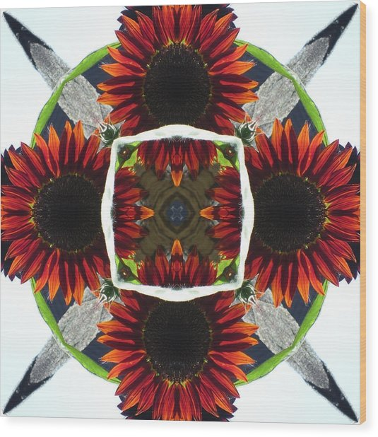 Red Sunflower And Feather Wood Print