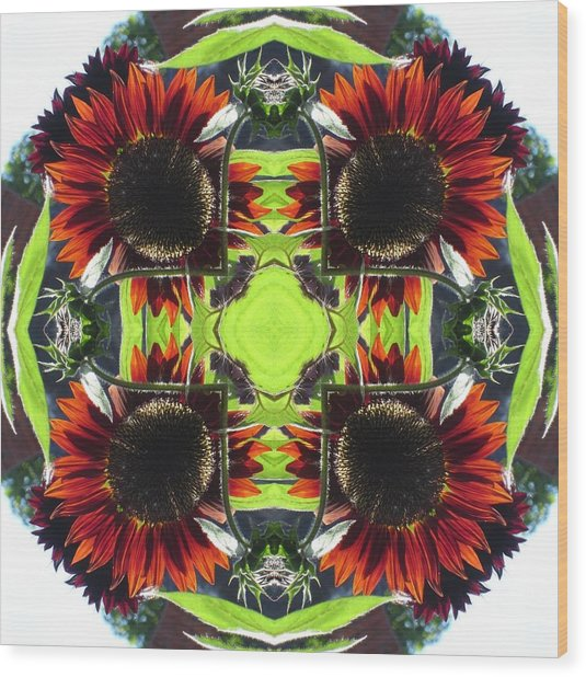 Red Sunflowers And Leaf Wood Print