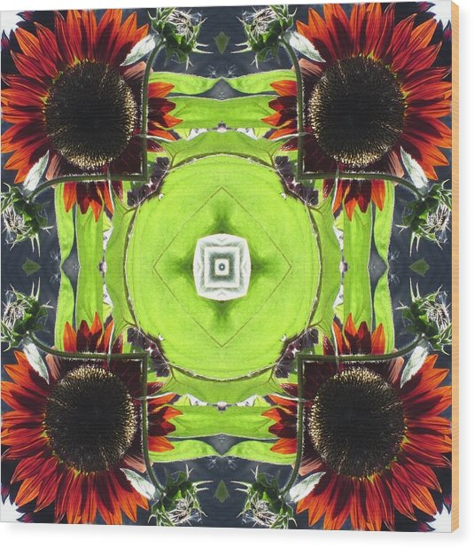Red Sunflowers In A Square Wood Print