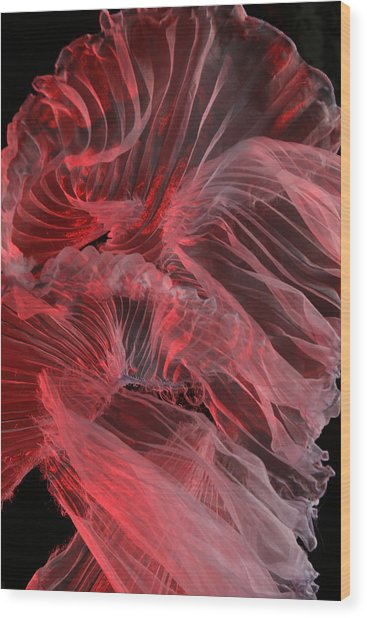 Red Textures Wood Print