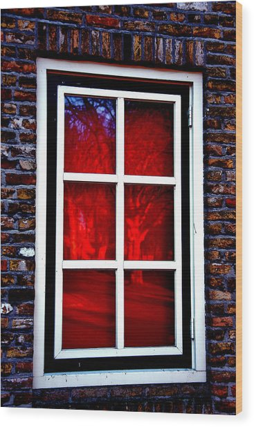 Red Window Holland Wood Print