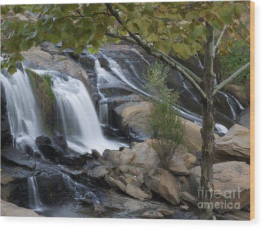 Reedy Falls II Wood Print