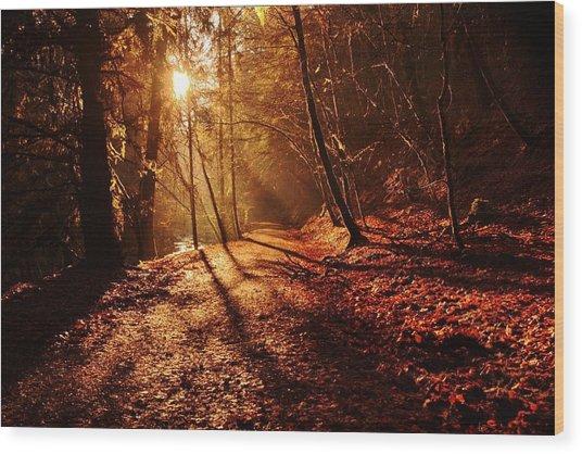 Reelig Sun Wood Print