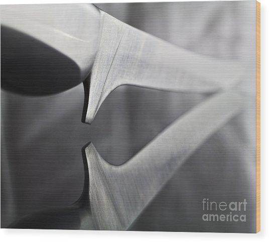Reflection Wood Print by Elena Nosyreva