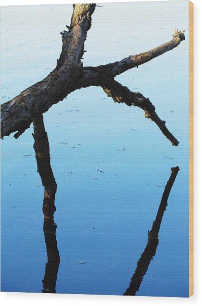 Reflections #1 Wood Print by Todd Sherlock