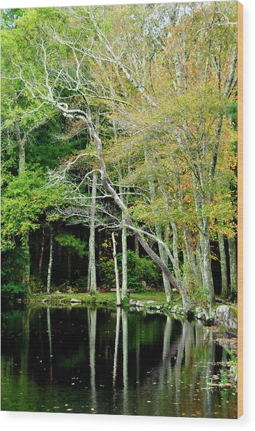 Reflections On A Fall Day Wood Print