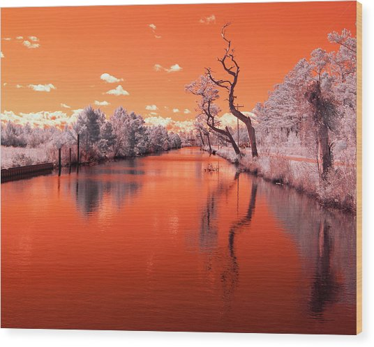 Reflections On Canal In Infra Red Wood Print by Jackie Briggs