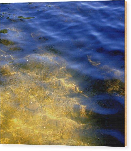 Reflections On Sandwell Wood Print