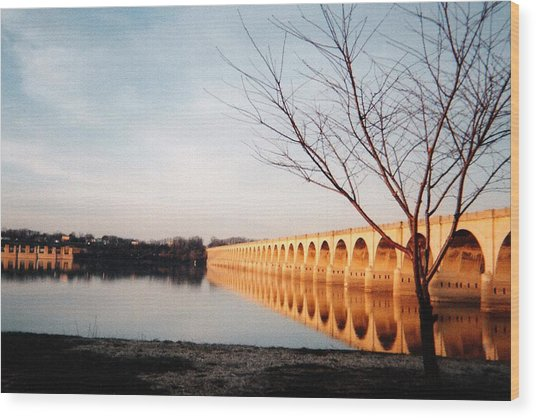 Reflections On The Susquehanna Wood Print by Ed Golden