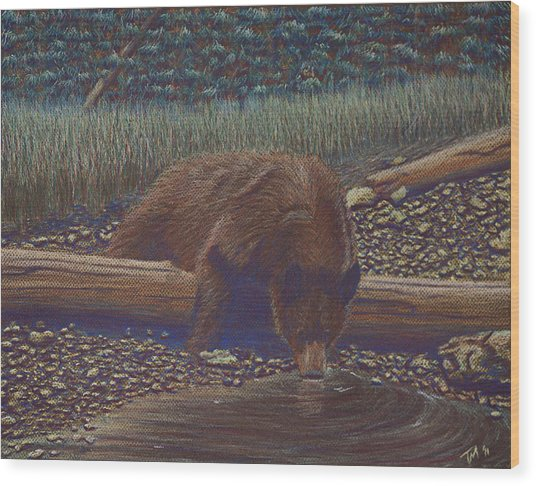 Relaxing With A Drink Wood Print by Thomas Maynard