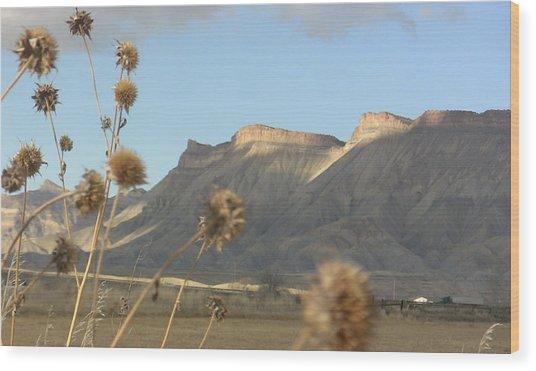 Reprieve From Desert Sun Wood Print