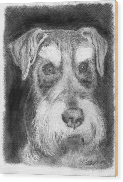 Rescue Dog-kirby Minature Schnauzer Wood Print by Jim Hubbard