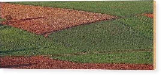 Resting Fields 1 Wood Print